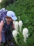 Amongst beargrass
