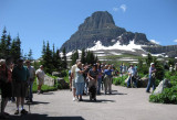 Tourists at Logan Pass, Glacier NP