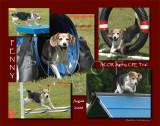 Heaton 11x14 Special 5-photo montage