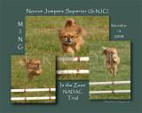 Murphy 8x10 Ming