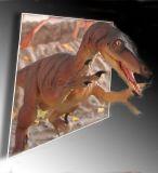 OOB Dinasaur copy.jpg