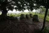 Jars in the Rain, Xieng Kouang, Laos