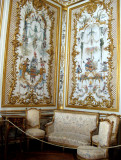 The monkey room (la Grande Singerie)