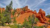 Visit ...  Zion National park