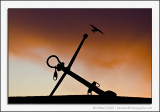 Crow and Anchor