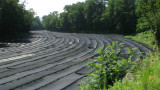 Curving row of wasabi fields