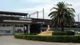 Palm tree outside drab Utsumi Station