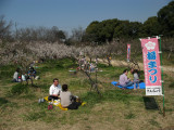 Relaxing on a warm early March day, Sōri-ike