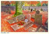 20091101-5D-041_2_3v Custom.jpg