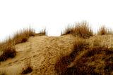 ...Spirit Sands...