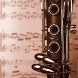 Clarinet  I