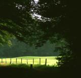 Landscapes in the Netherlands