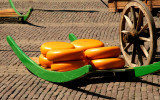 Alkmaar Traditional Cheese Market