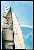 Louis Vuitton Trophy PAT0861.jpg