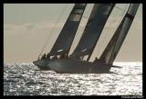 Louis Vuitton Trophy PAT1346.jpg