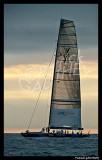 Louis Vuitton Trophy PAT1463.jpg