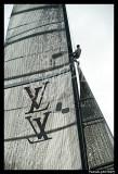 Louis Vuitton Trophy 1856.jpg