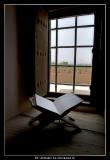Window in Jabrin Fortress