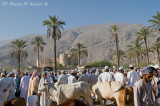 Eid live stock market in Rustaq