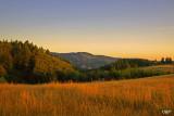 Langlois Mt, Coast Range, OR