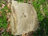 Bukowsko Jewish Cemetery - 2008