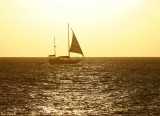 Sailboat from Maho Beach