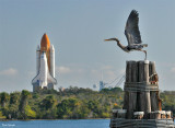Birds of a feather prepare for flight as Atlantis rolls out to Pad 39A