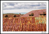 Rusted Roofs