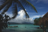 DSC02185.jpg POHNPEI, MICRONESIA see from Black Coral Island
