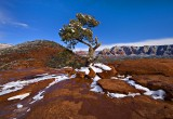 Sedona  Red Rock Snow