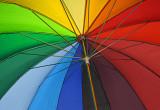 _MG_0511 Umbrella - #2