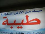 The taiba land(Medina)
