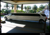 Stretch Limo - side