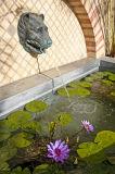 Small Fountain, Herb Garden