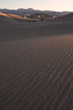Morning Dunes  #1, Stovepipe Wells