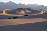 Morning Dunes #2, Stovepipe Wells
