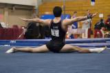 Stanford Gymnast