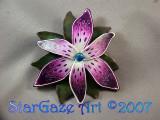 Flower a la Jane Zhao