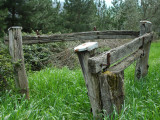Fencing from yesteryear