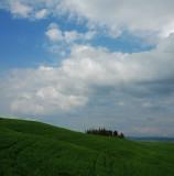 The fields of San Quirico