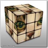Virtual Rubik's Cubes