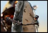 Ringo Beatle (aka Bobby the Beetle)