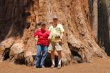 Jim & Glynda with a Giant Sequoia