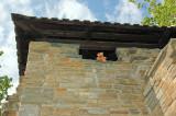 I'm good at climbing!!!!