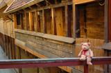 Exploring Bryggen