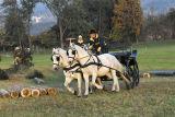 Pferdewettkampf, 26. Oktober 2006, Walpersbach