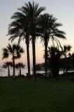 Cyprus. Sunset