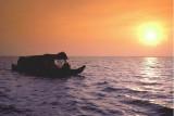 KERALA - LAKE  BIRDS  SANTUARY