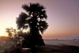 THE SUN RAYS ON THE BEACH
