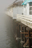 Santa Cruz Jan 2007